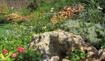 garden design flowers and rocks