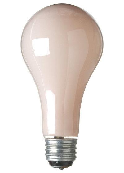 Contemporary Light Bulbs by Amazon