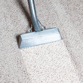 Kelowna, BC Carpet & Upholstery Cleaners