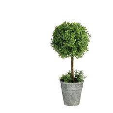 "17"" Artificial Boxwood Topiary in Decorative Distressed Gray Paper Mache Pot"