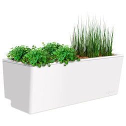 Contemporary Outdoor Pots And Planters by Glowpear