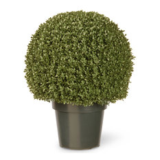 "22"" Mini Boxwood Ball With Green Pot"