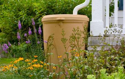 Hurra, es regnet! So nutzen Sie Regenwasser für Haushalt und Garten