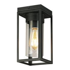 Walker Hill 1-Light Outdoor Ceiling Light, Matte Black