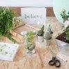 Suivez le Guide : Le paradis des plantes dans un 31 m²