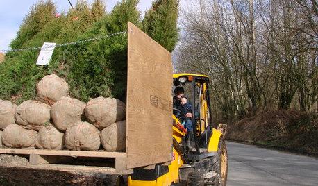 Как правильно: Заказывать растения в европейских питомниках