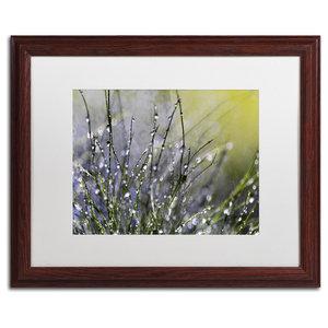"Beata Czyzowska Young 'Spring Morning' Art, Wood Frame, 16""x20"", White Matte"