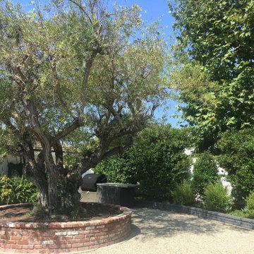Highland Drive Back Yard Remodel - Newport Beach