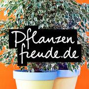 Foto von Pflanzenfreude.de