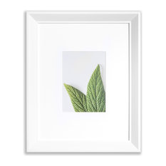 "VISTA Daintree 11""x14"" Wide Bevel Frame, Matted to 5""x7"", White"