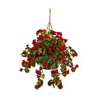 Geranium Hanging Basket Uv Resistant, Indoor and Outdoor