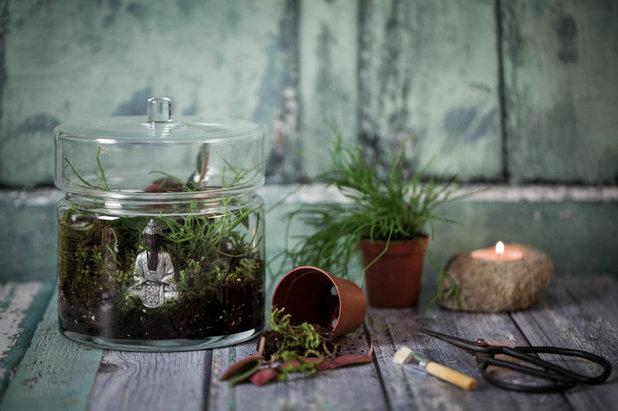 diy cr er un terrarium en pleine conscience pour se ressourcer. Black Bedroom Furniture Sets. Home Design Ideas