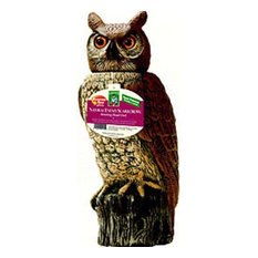 Shop Wide Giant Eye Hilarious Garden Owl Statue Products on Houzz