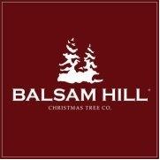 Balsam Hill's photo