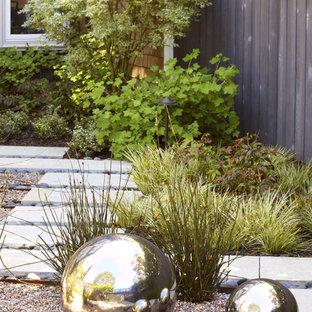 Design ideas for a contemporary gravel landscaping in San Francisco.