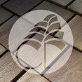 Cedar Roofing's profile photo