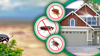 Pest Control Geelong