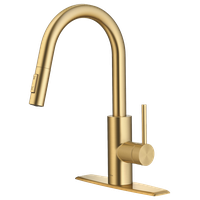 Oletto Pull-Down 2-Function 1-Handle 1-Hole Kitchen Faucet BB (Model KPF-2620BB)