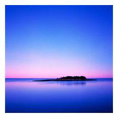 "Island Study, Schoodic Peninsula, Acadia National Park, 2004, 45""x45"""