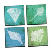 Carribean Shells Canvas Wall Art; Set of Four 16x16in Canvases