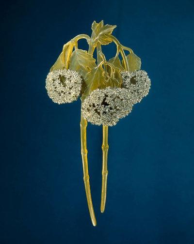 Проект недели: Сад в стиле модерн на Moscow Flower Show