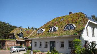 Dachbegrünungen - Flachdächer - Gründächer