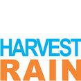 Harvest Rain's profile photo