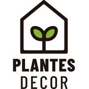 Foto de Plantesdecor
