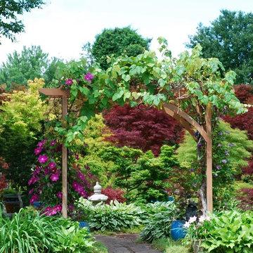 Mr. Maple display garden