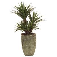 Planter JOHN-RICHARD Succulent Aloes Aloe