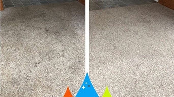 Before & After Carpet Stain Removal in Moore, SC