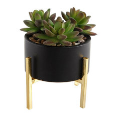 Succulents Mix, Ceramic Pot With Gold Stand, Black
