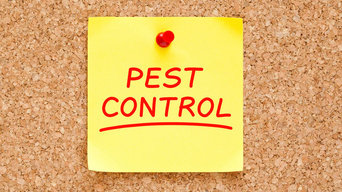 Bed Bug Exterminator in Brookfield at Premier Pest Control Services