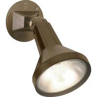 Adjustable Swivel 1-Light Outdoor Wall Light, Dark Bronze