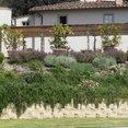 Foto di profilo di giardino toscana srl