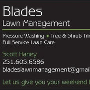 Blades Lawn Management's photo