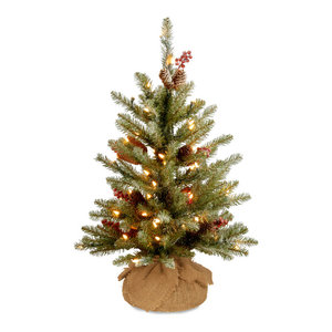 2' Dunhill Fir Tree With Battery Operated Warm White LED Lights