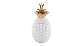 Pineapple Guadalupe Accent