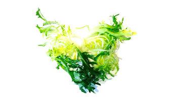 Frisee Love