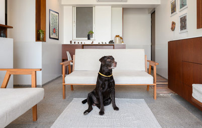 Architect Jude D'Souza's Mumbai Flat: Also Designed for the Family Pet