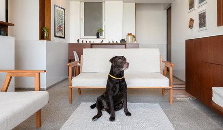 Architect Jude D'Souza's Mumbai Flat: Also Designed for the Family Pet