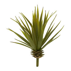 Mini Spiky Agave Succulent Plant - Set of 12