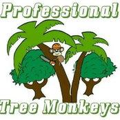 Professional Tree Monkeys LLC's photo