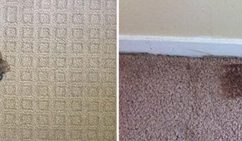 Carpet Repair Brisbane