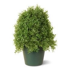 "18"" Boxwood Tree With Green Pot"