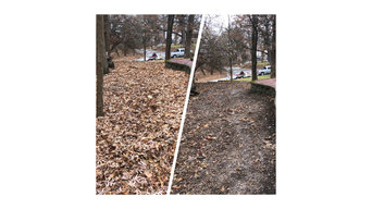 Side Mulched Area