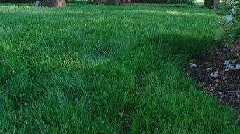 Residential Lawn - Wilmington, DE
