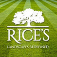 Rice's's profile photo