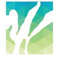 Windham Studio, Inc.'s profile photo