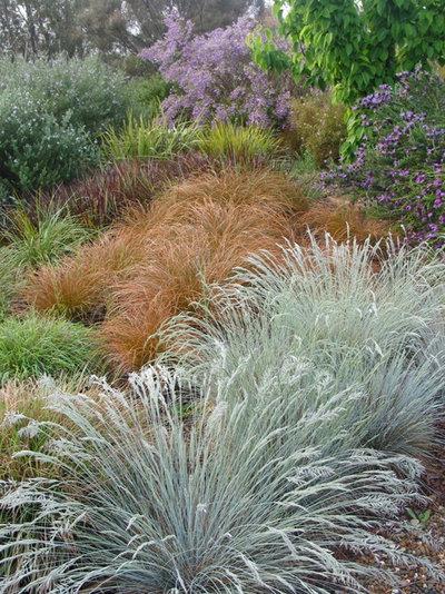 Eclectic  by Arthur Lathouris Garden Designer